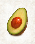 Studio Shot Paintings - Avacado  by Danny Smythe