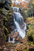Nh Framed Prints - Avalanche Falls - Franconia Notch Framed Print by Thomas Schoeller