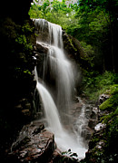 Hidden Falls Posters - Avalanche Falls Poster by Heather Applegate
