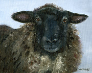 Barnyard Animal Paintings - Baa Baa Black Sheep by Vicky Watkins
