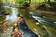 West Fork Photos - Back Fork of Elk River by Thomas R Fletcher