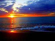 Robert Francis - Bad Sunset
