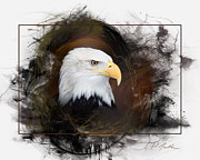 Huge Digital Art Prints - Bald Eagle Portrait Print by Al  Mueller