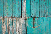 Vintage Wall Prints - Barn door Print by Tom Gowanlock
