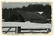 Old Barns Mixed Media Posters - Barn in Winter BW Poster by Chalet Roome-Rigdon