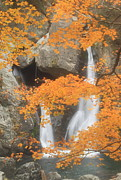Berkshires Prints - Bash Bish Falls in Autumn Print by John Burk