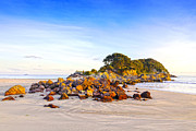 Plenty Prints - Beach Mount Maunganui New Zealand Print by Colin and Linda McKie