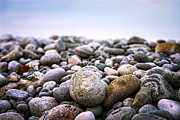 Rocks Photo Framed Prints - Beach pebbles Framed Print by Elena Elisseeva