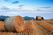 Beautiful Golden Hour Hay Bales Sunset Landscape Print by Matthew Gibson