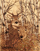 Buck Pyrography Prints - Bedding Down Print by Robert Jerore