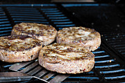 Grid Photos - Beef quarterpounder burgers cooking on the gas barbecue by Fizzy Image