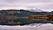 Still Water Framed Prints - Ben Lomond Framed Print by John Farnan