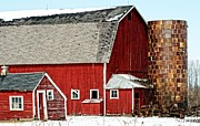 Cheryl Cencich - Big barn little barn