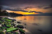 Nigel Hamer - Binstead Sunset