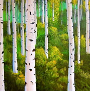 Heather Matthews - Birch tree forest