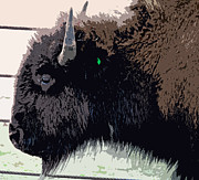 Bison Digital Art - Bison I by LeeAnn McConnell