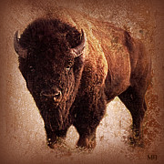 Buffalo Mixed Media Posters - Bison Poster by Mindy Bench