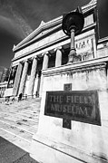 Museums Photos - Black and White Chicago Field Museum by Paul Velgos