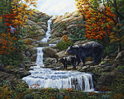 Baby Animals Prints - Black Bear Falls Print by Crista Forest