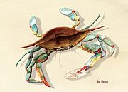 Anne Beverley - Blue Crab