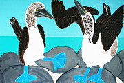 Boobies Paintings - Blue footed Boobies. by Matthew Brzostoski
