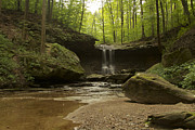 Cvnp Prints - Blue Hen Falls Print by Jack R Perry