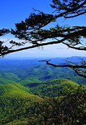 Michael Weeks - Blue Ridge Mountains...