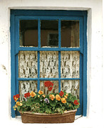 Joe Cashin - Blue window