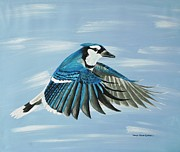 Bluejay Paintings - Bluejay by Donna Jean Carver