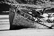 Demise Posters - boat wreck on bunbeg beach in gweedore gaeltacht county Donegal Republic of Ireland Poster by Joe Fox