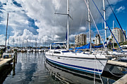 Sailboat Posters - Boats in Marina Saint Petersburg Florida Poster by Amy Cicconi