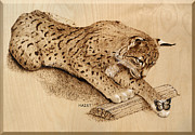 Log Pyrography Posters - Bobcat Poster by Ron Haist