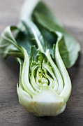 Cutting Prints - Bok choy Print by Elena Elisseeva