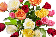 Multicolored Roses Prints - Bouquet of roses from above Print by Elena Elisseeva