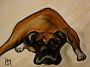 Sleeping Dog Pastels Posters - Boxer Down Poster by Pete Maier