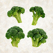 Nutrition Framed Prints - Broccoli Isolated on White Framed Print by Danny Smythe