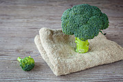 Broccoli Photos - Broccoli by Sabino Parente