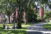 Campus Life Prints - Brown University Print by John Greim