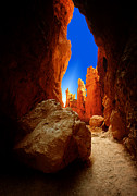 Gary Warnimont Metal Prints - Bryce Canyon Narrows Metal Print by Gary Warnimont