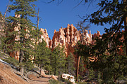Michael J Bauer - Bryce Canyon National...