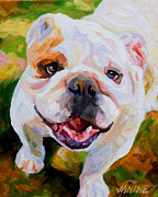 Janine Hoefler - Bulldog Beauty