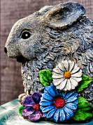 Christopher Holmes - Bunny