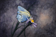 Hallmark Drawings Metal Prints - Butterfly Metal Print by Bob Hallmark