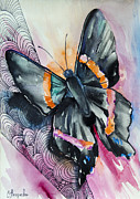 Colorful Animals Drawings Framed Prints - Butterfly Framed Print by Slaveika Aladjova