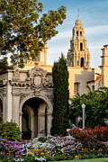 Balboa Park Prints - California Tower Print by Doug Oglesby
