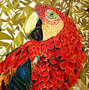 Amazon Parrot Paintings - Calypso by Judy Swircenski