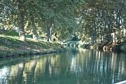 Rogerio Mariani - Canal Scene