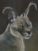 Margaret Paintings - Caracal Cat by Margaret Saheed