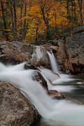 Stream Photos - Cascades of Glen Ellis Falls in autumn by Jetson Nguyen