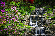Asian Framed Prints - Cascading waterfall Framed Print by Elena Elisseeva